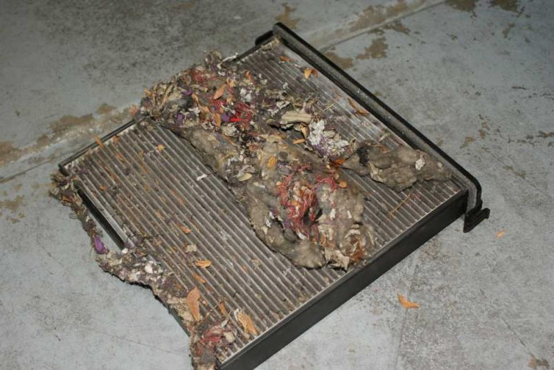 Cabin Air Filter...Gross!!! - Drive Accord Honda Forums